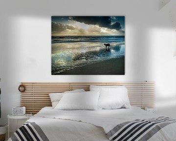 Sunset Strand Schoorl van Peter van Nugteren