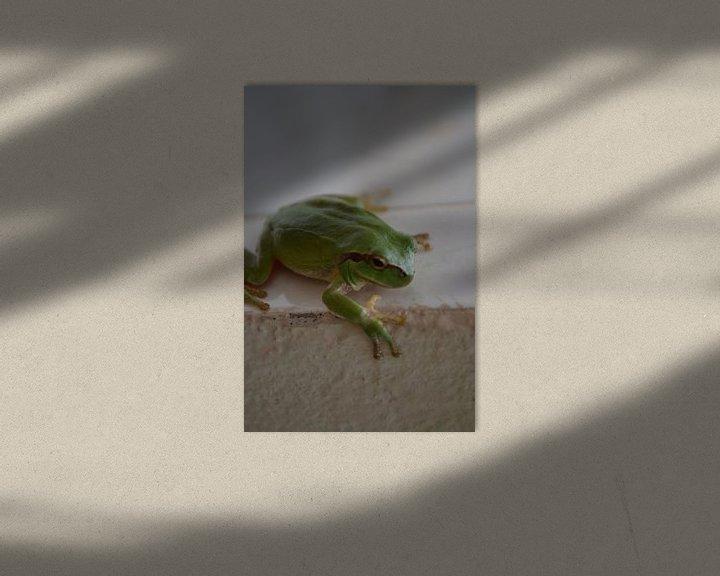 Sfeerimpressie: Groene Kikker van Jeroen Stegeman