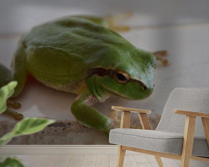 Sfeerimpressie behang: Groene Kikker van Jeroen Stegeman