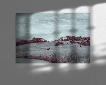 Landschaps foto over Knebel in Denemarken van Tina Linssen