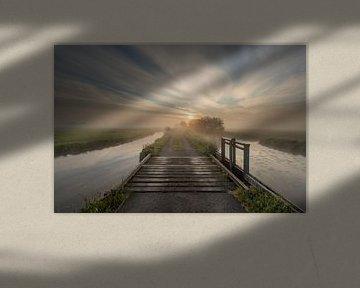 Sonnenaufgang über dem Polder