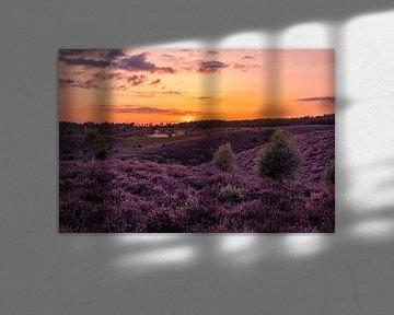 Zonsondergang Posbank Rheden van Rick van de Kraats