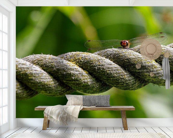 Beispiel fototapete: Feuerlibelle von Anjo ten Kate