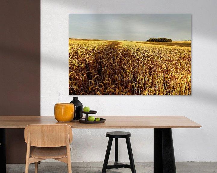 Beispiel: Getreidefeld mit Baumschatten von Ralf Lehmann