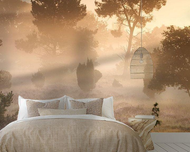 Beispiel fototapete: Nebliger Sonnenaufgang von Art Wittingen