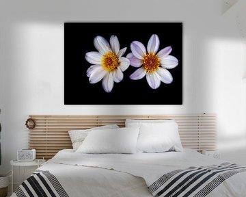 Blühende Blumen von Eline Bouwman