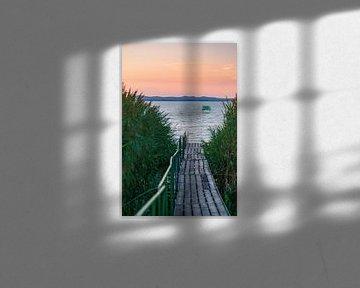 Steg durchs Schilf am Plattensee in Ungarn zum Sonnenuntergang