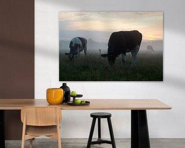 Koeien in de mist in Brabant van Esther Wagensveld