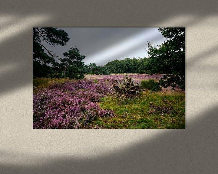 Sfeerimpressie: Heide in Bloei van Erik Reijnders