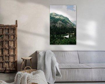 Montagnes Tatra Slovaquie I sur Suzanne Spijkers