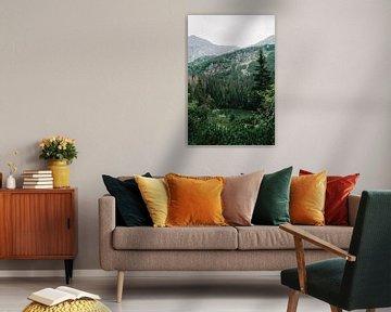 Montagnes Tatra Slovaquie IV sur Suzanne Spijkers
