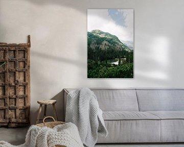 Montagnes Tatra Slovaquie VI sur Suzanne Spijkers