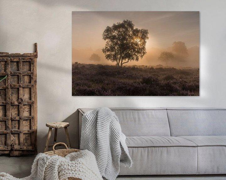 Beispiel: Nebel bei Sonnenaufgang auf der Westerheide 2 von Jeroen de Jongh