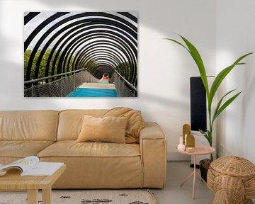 Slinky Spring to Fame van Jan Enthoven Fotografie