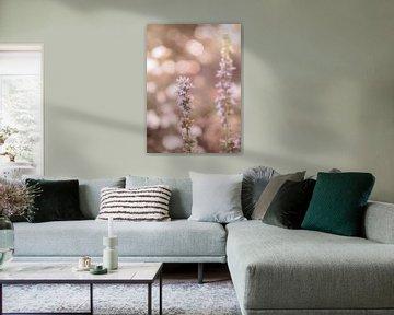 Blumen Teil 194 von Tania Perneel