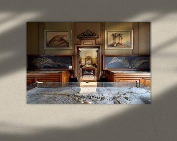 1e Fossielenzaal in Teylers Museum van Teylers Museum
