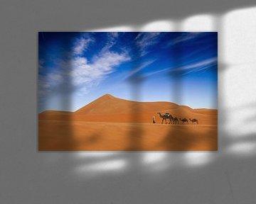 Woestijn leven .., Hesham Alhumaid van 1x