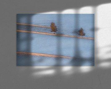 Lichte sporen, Petar Sabol van 1x