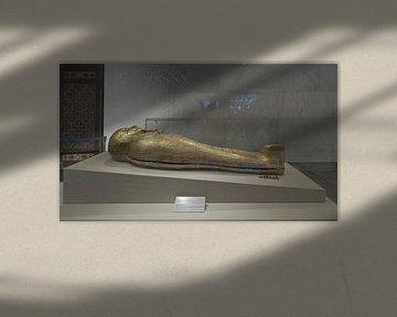 De gouden doodskist van Nedjemankh van Mohamed Abdelrazek