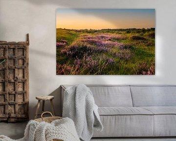 Die Heide von Texel von Danny van de Graaf