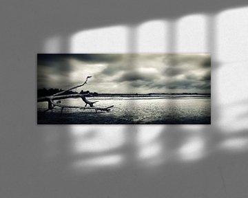 Drunenseduinen_storm op komst van Jan Brand