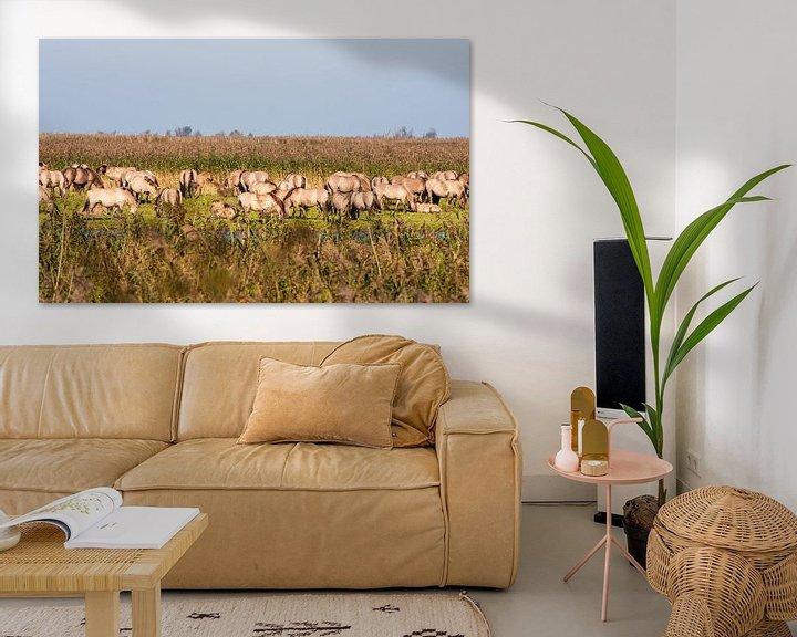 Sfeerimpressie: Wild horses in the Flevopolder in the Netherlands van Brian Morgan