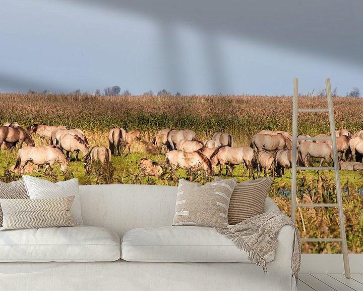 Sfeerimpressie behang: Wild horses in the Flevopolder in the Netherlands van Brian Morgan
