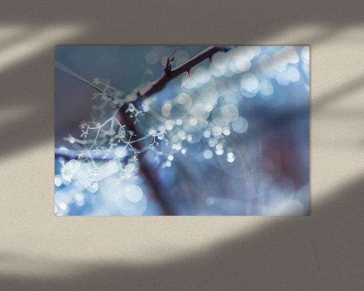 Sfeerimpressie: Winter Bokeh van Cho Tang