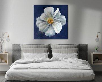 Brutaalste bloei ik donkerblauw, Danhui Nai van Wild Apple