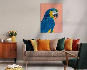 Blauwe en gouden ara, Pamela Munger van Wild Apple