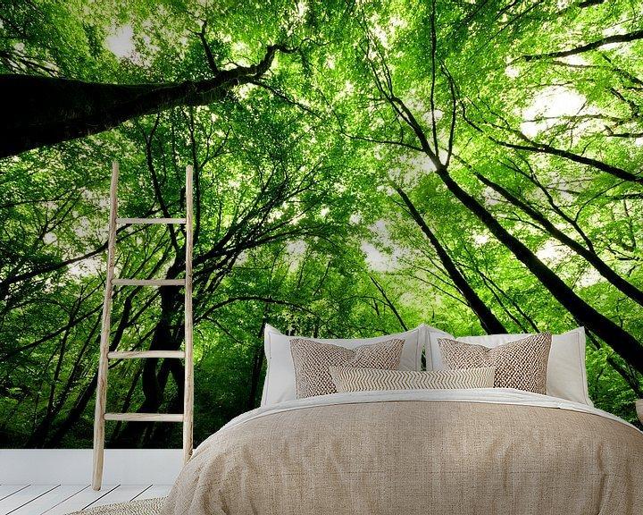 Sfeerimpressie behang: In het bos van Ricardo Bouman