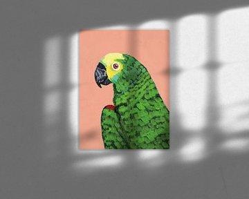 Papageikopf., Pamela Munger von Wild Apple