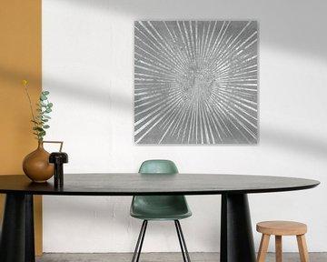 Zilveren Sunburst I, Wild Apple Portfolio van Wild Apple