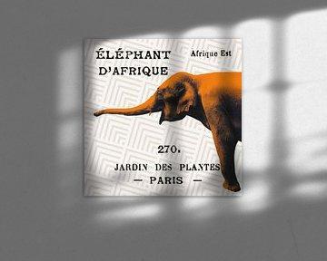 Heldere safariolifant op taupe, Sue Schlabach