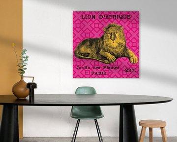 Heller Safari-Löwe., Sue Schlabach von Wild Apple