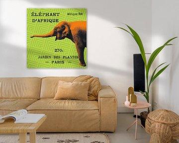 Heller Safari-Elefant., Sue Schlabach von Wild Apple