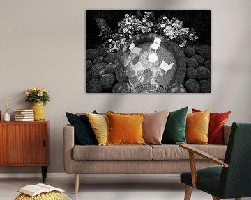 White Garden von Carla Godrie