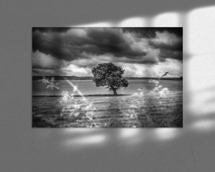 Impression: Paysage en noir et blanc sur Mark Bolijn
