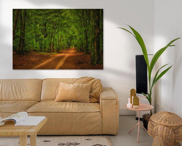 Beispiel: Wanderweg Speulderbos von Sander Poppe