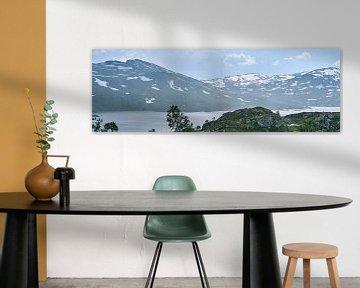 Panorama Berglandschap Noorwegen van Lampe Productions