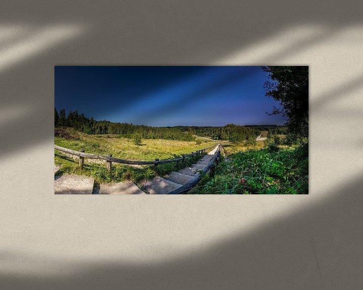 Sfeerimpressie: De trap in natuurgebied Kwintelooyen tussen Rhenen en Veenendaal van Jacques Jullens