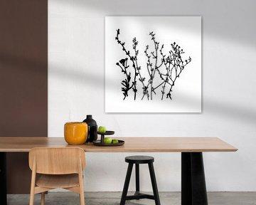 Botanische illustratie met planten, wilde bloemen en grassen 8.  Zwart wit.
