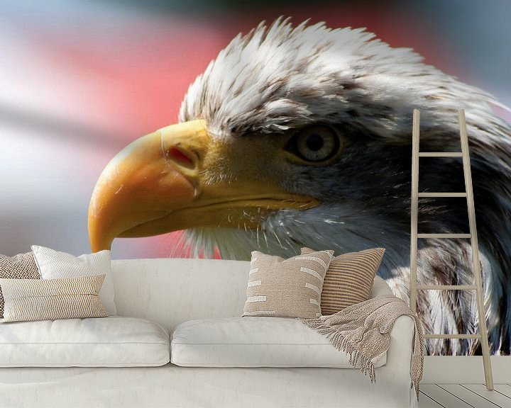 Sfeerimpressie behang: american sea eagle van Rick Nijman