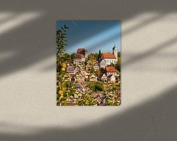 Altensteig dans la Forêt-Noire