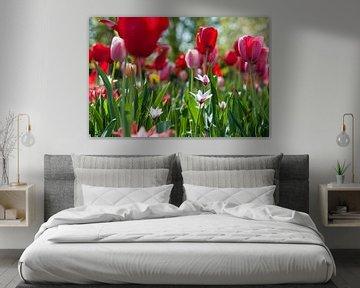 Mélange de couleurs de printemps sur Rob Donders Beeldende kunst
