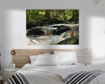 Het wilde water van de Roer van Leo Kramp Fotografie
