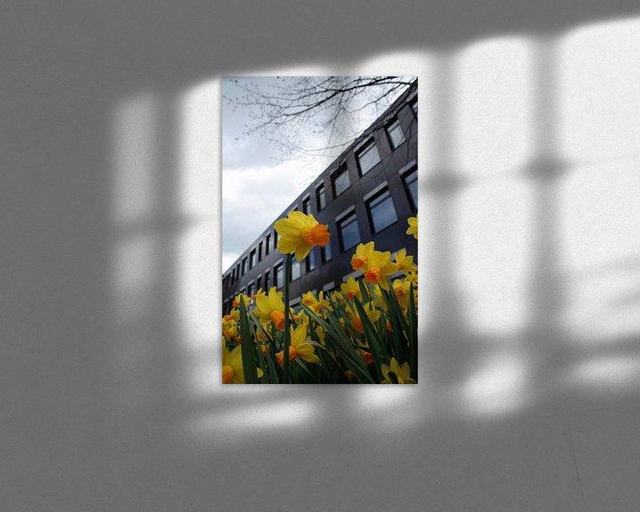 Sfeerimpressie: narcis in bloei van Rick Nijman