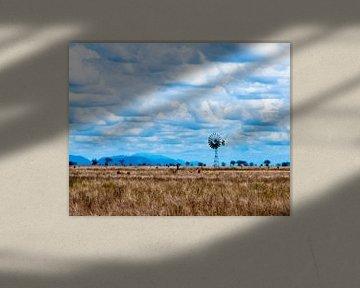 Savanna Windmill von Alex Hiemstra