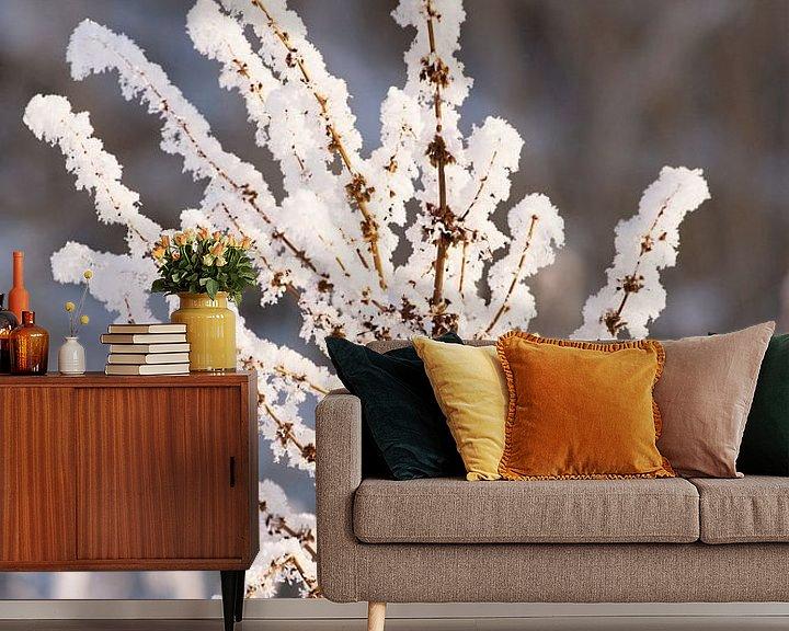 Sfeerimpressie behang: A touch of frost van Brian Morgan