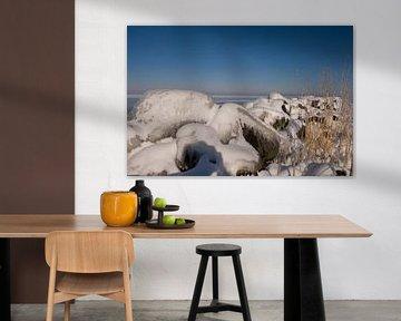 A shoreline in winter van Brian Morgan